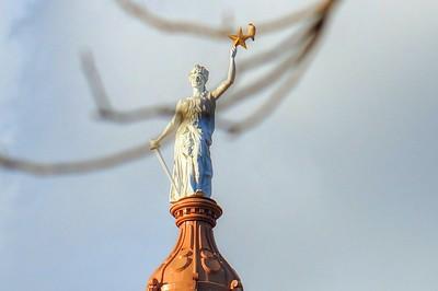Liberty's Hawk