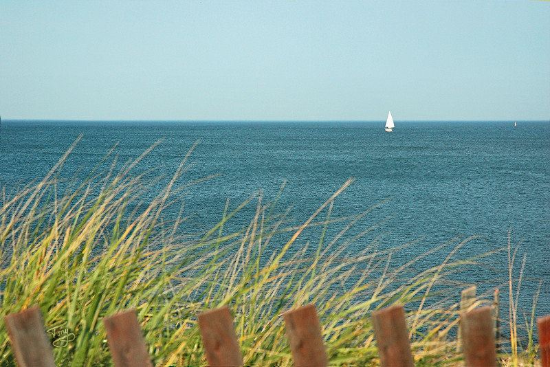Plum Island - Sailboat