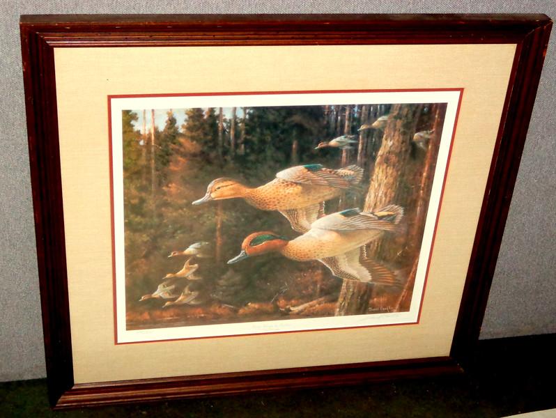 Green Wings in Timber  by John Conklin