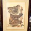 Koala Bear Framed Art Hand Signed by C. Walling. in Frame.  19 x 27.  <b>$40</b>