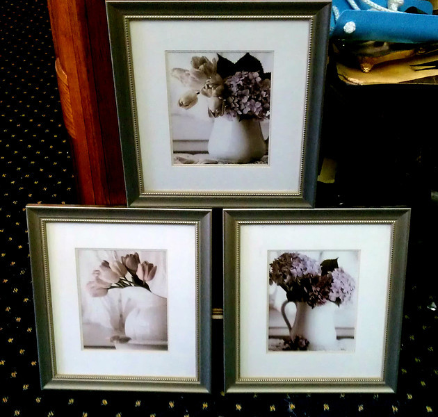 <b>Available at our Livernois Store Location - (313) 345-0884. </b>  Set of 3 Still Life Framed Art Wall Hangings.  <b></b>