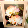 Close-Up Floral Framed Art.  22 x 27.  <b>$30</b>