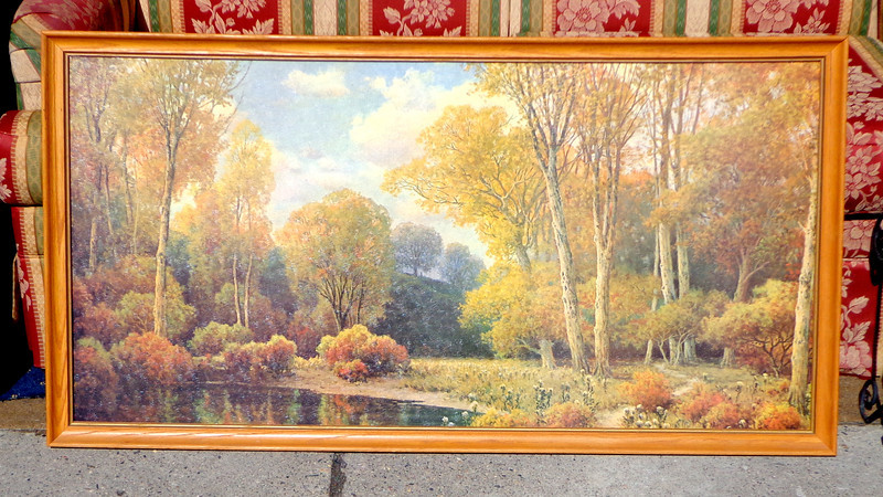 Nature Scene Framed Art in Excellent Condition.  50 x 27.  <b>$60</b>