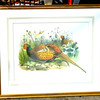 Pheasant - Phasianus Shawii. Ringneck Pheasant, male , classic upland game bird for hunters. 31 x 26.  <b>$35</b>