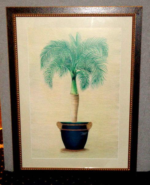 Potted Palm Fine Art Print