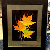 Unique 3-Dimensional Preserved Fall Leaves on Black Felt.  Wall Mount or Table Display.  Sugar Maple Leaves.  Maple leaves are the national symbol of Canada.  14 x 17.  <b>$75</b>
