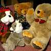 Adorable Stuffed Animals.  We've got a bunch to look at, so stop by if you are in the area and get one for your kids.  There's more to Fred's Unique Furniture than furniture.  Get lost in our 60,000 sq. ft. showroom.  <b>Make a fair offer.</b>