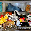 Hundreds of Beanie Babies New and Lightly Used in Our Upstairs Boutique.  To be honest, we don't know what we have, but there's certainly a lot to see.  There's more to Fred's Furniture besides furniture.  Have some fun when you shop.  <b>Make a Fair Offer</b>