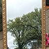 Gold Framed Mirrors