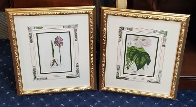 Sutton Fine Art Prints