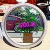 Impressive Contemporary 34-Inch Wall Mirrors in Excellent Condition.  We just received another small shipment and these typically sell out fast.  Don't wait too long.  Extra sharp.  These beautiful mirrors create an elegant focal point in any transitional or contemporary home.  You and your guests are sure to be impressed.  A great value. <b>$95</b>