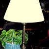 "Thin Brass Table Lamp with Elegant Shade.  31""  <B>$35</B>"