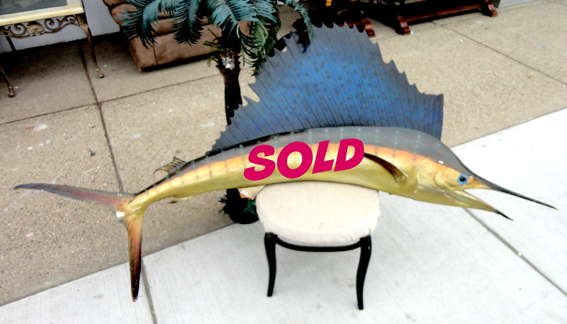 Giant Taxidermy Quality Blue Marlin Fish 72 Wall Mount.   This fish is a full mount with all visible surfaces finished. This fish has a glass eye to complete its realistic design. This fish is really special. His colors are intense and vibrant! Want that trophy fish for the den or office, this is your guy! 72 x 37.  <b>$150</b>