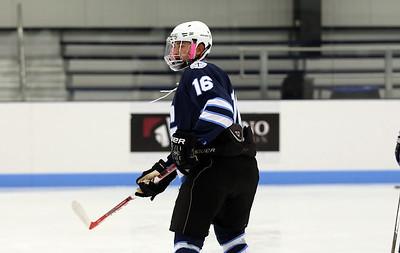 Gordon Men's Club Ice Hockey 2016-2017