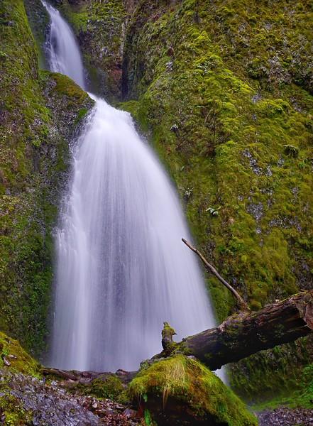 Wahkeena Falls