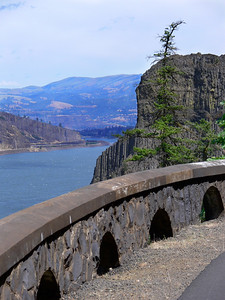 For a baby carriage friendly walk head to the abandoned road along the wall of the Gorge from Hood River to Mosier. Two tunnels and great views make this a easy but scenic walk.