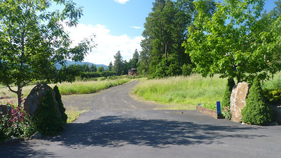 This is the 700 foot private driveway to the guest house and the entrance to the parking area.