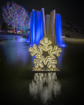 Blossom's of Light Snowflake at the Denver Botanic Garden, Denver, Colorado