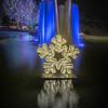 Blossom's of Light Snowflake at the Denver Botanic Garden, Denver, Colorado