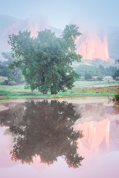 Garden of the Gods Morning Reflection