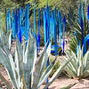 Chihuly Glass in the Desert Museum