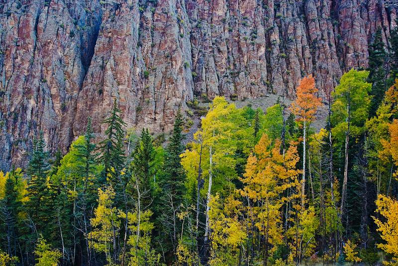 Fall Colors and Colorado Granite
