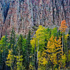Fall Colors and Colorado Granite