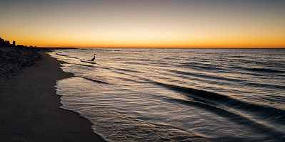 "Sunrise at Orange Beach, Alabama and Egret ""Fishing"""