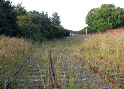 The track has become overgrown with vegetation again in around six weeks; view from Forest Way towrds Fareham Road and Frater Gates. 26th June 2009.