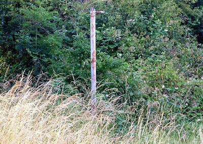 Another mysterious trackside pole at Holbrook; I don't think it's a gatepost, and it's too short for a telegraph pole...  26th June 2009.