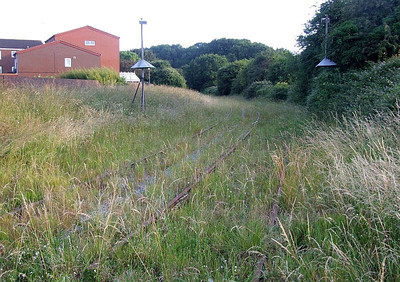 Overgrown trackbed looking west towards Tichborne Way bridge from Forest Way, Holbrook. Note the 'lampshade' things on poles either side of the track (see next photo for close-up); any ideas? 26th June 2009.