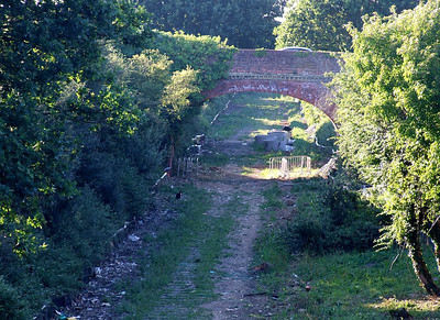 Brewers Arch, viewed from Tichborne Way o 26th June 2010; a clearer, and much drier shot of the cleared trackbed.