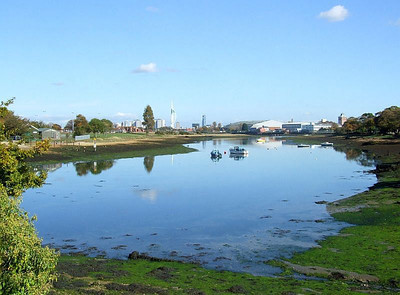 Haslar Creek, looking west from the trackbed just south of Jackie Spencer's Bridge. 12th October 2009.