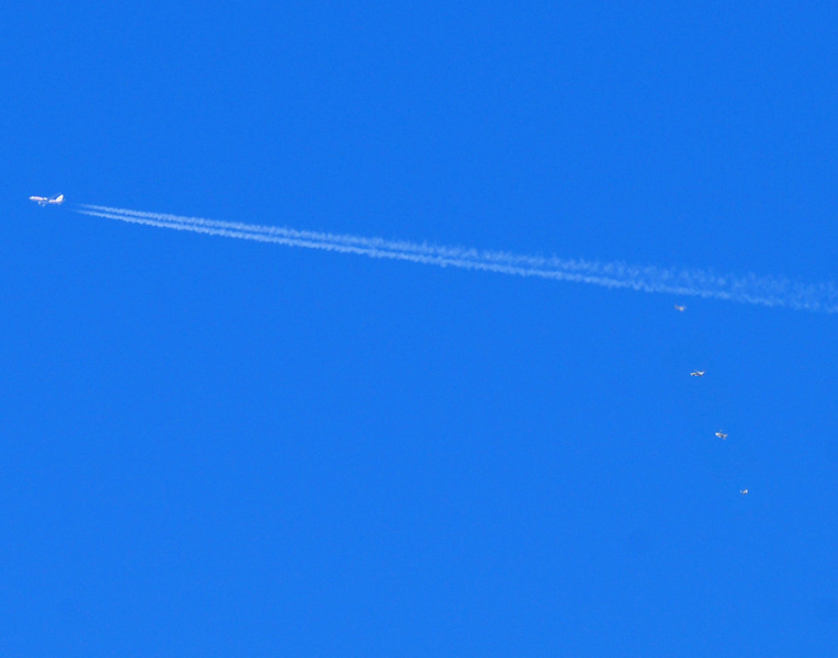 This photograph is a composit of all three photographs of the falling object together with the jet and vapor trail. It is not a true photograph. It is for comparison purposes only