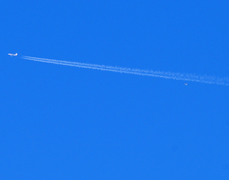 "Friday, October 22 (Full Moon), I was photographing birds in my front yard. The sun was lighting up the sky. A jet, in a higher altitude to leave a beautiful vapor trail passed by and I photographed it. Then I noticed in my camera viewfinder something behind and below the plane flashing/reflecting the sunlight. It appeared to be a plane in a ""death spiral."" I photographed it until one of the flashes caused the camera to loose focus. Can you tell what it is? I was told by the police officer and the FAA official he was speaking to that the falling object was a bird. Can a bird survive that high in the atmosphere and would we have a bird that large which could survive a jet impact and stay intact? What do you think?"