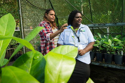 DHS staff member Rebecca Creek with community member Jennifer Burchill at Mossman Gorge, Queensland