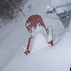 Feb-Snowday-2011-Alyssa-Chirch-1