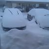 Feb-Snowday-2011-Melody-Swart