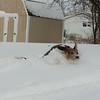 Feb-Snowday-2011-Nicki-Mahlmann