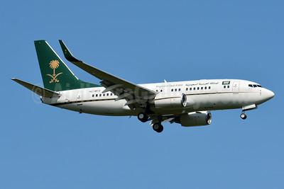 Kingdom of Saudi Arabia Boeing 737-7AJ WL (BBJ) HZ-MF2 (msn 33499) BSL (Paul Bannwarth). Image: 949223.