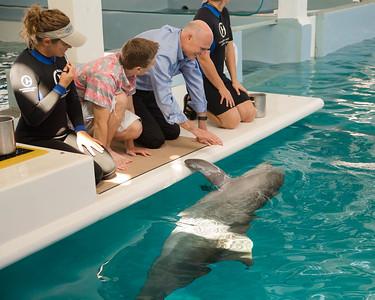 7-23-2015 Clearwater Marine Aquarium