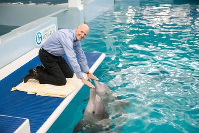 5-16-2016 Clearwater Aquarium Tourism Highlight