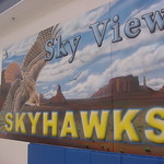 Sky hawks Right view