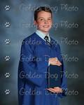 goldendog's photo