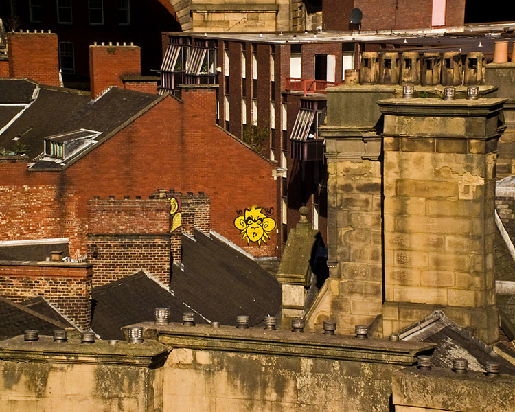 Mighty Mo on the rooftops in Newcastle