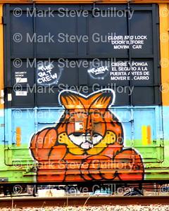 Graffiti, Train, Lafayette, Louisiana 03282019 002