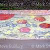 Graffiti, Sk8 Park, Lafayette, Louisiana 02172018 004