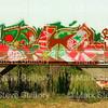 Graffiti, Train, Baker, La 09092017 012