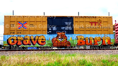 Graffiti, Train, Lafayette, Louisiana 03282019 001