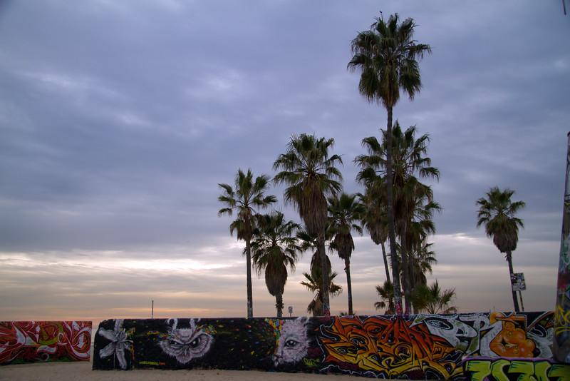 Graffitti and palm trees.